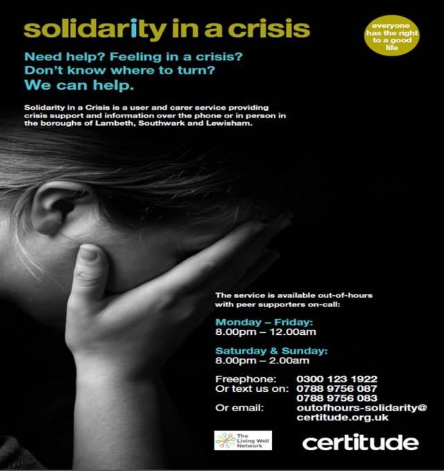Solidarity in Crisis Poster