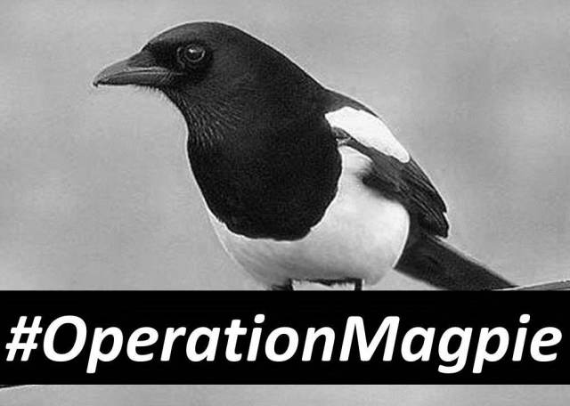 #OperationMagpie.jpg